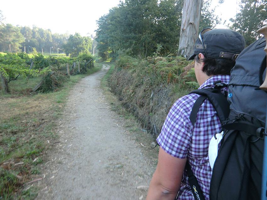 Camino Portugues Redondela nach Pontevedra Waldweg